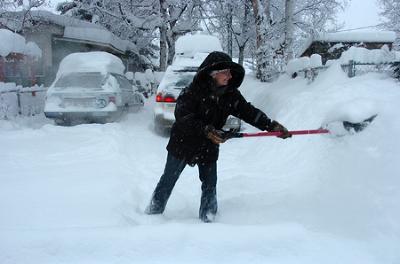 snowshoveler